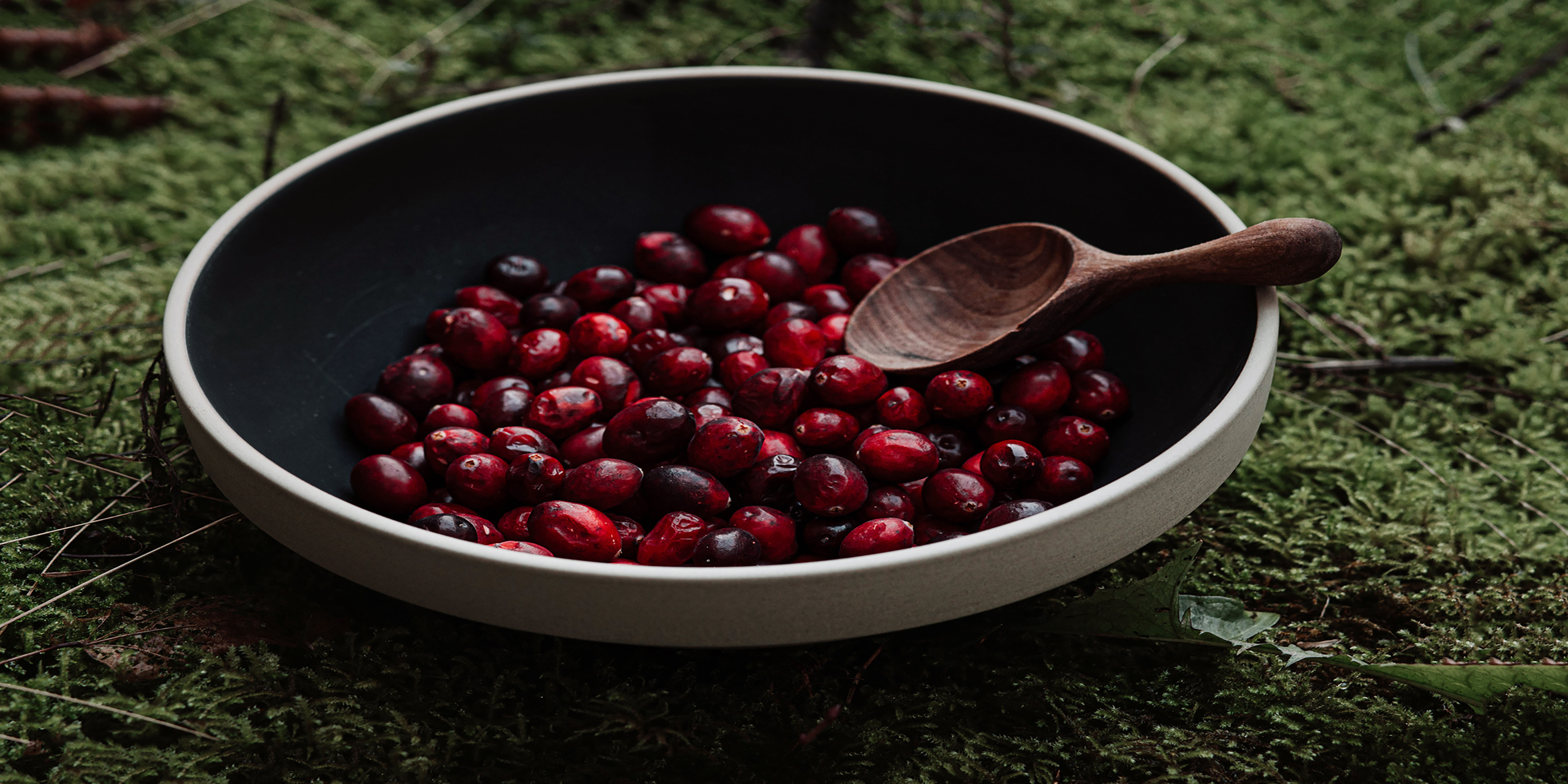 Apfel-Cranberry-Tarte