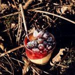 Espresso Creme mit marinierten Rum Früchten
