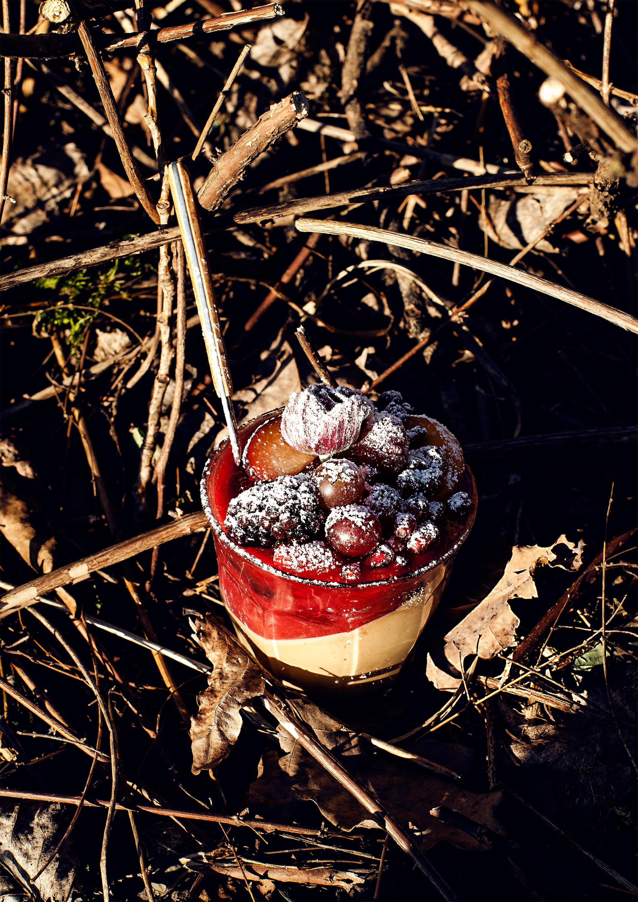 EspressoCrememitmariniertenRumFrüchtenIMG_0165