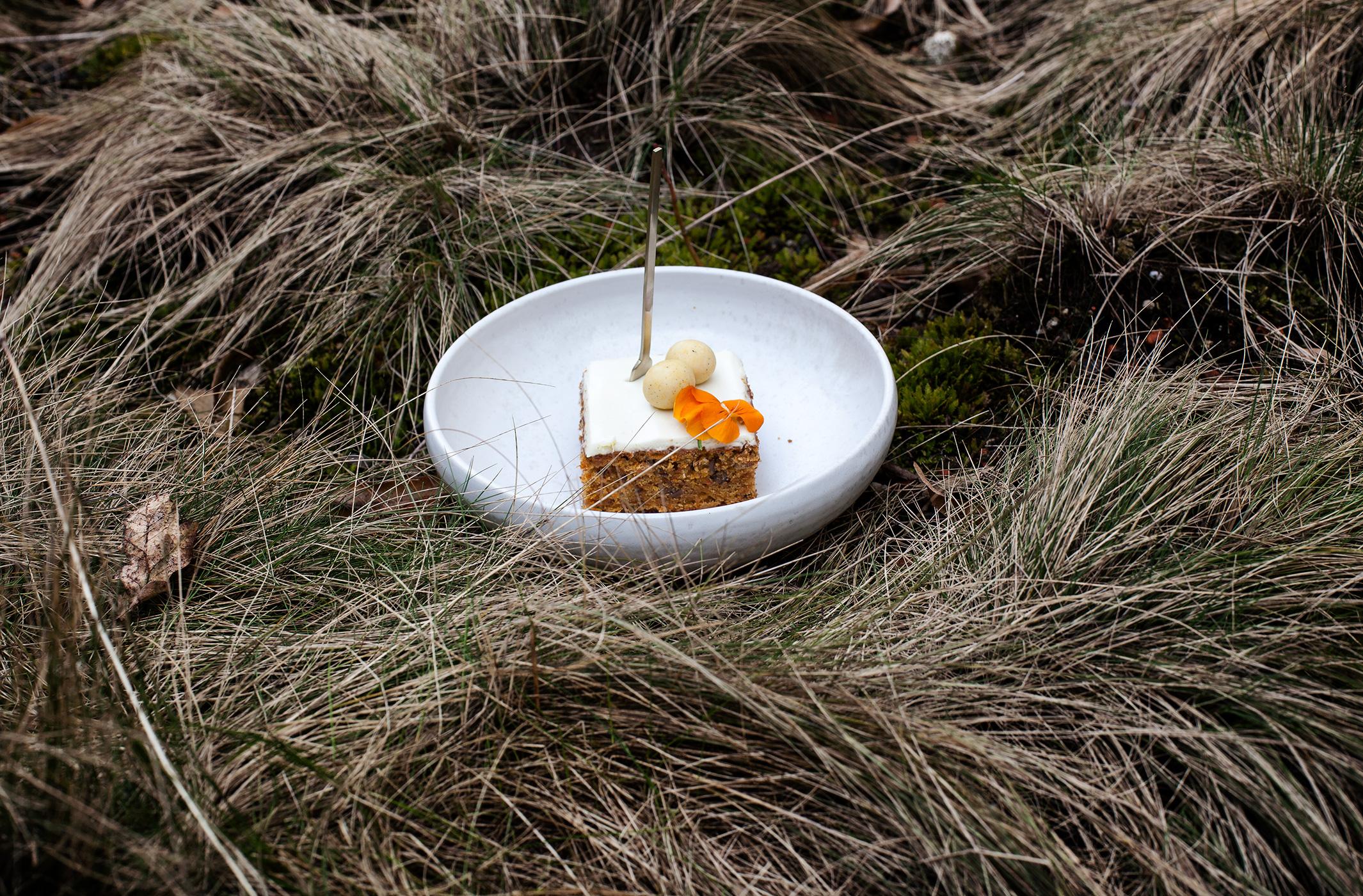 Möhren-Kuchen-mit-Ingwer-und-SauerrahmIMG_4603