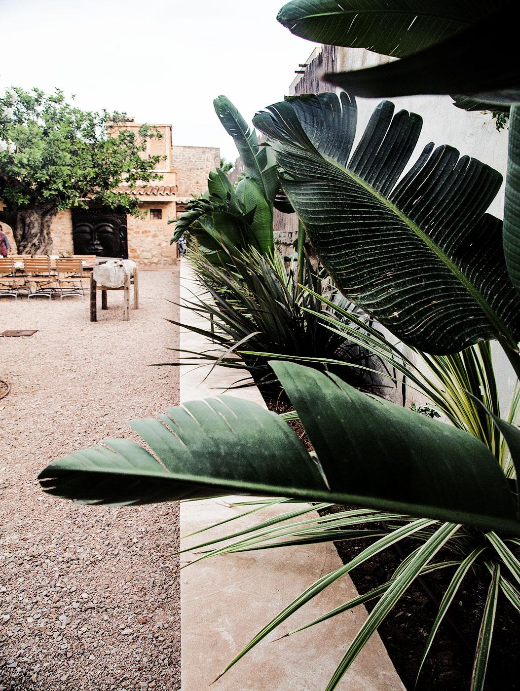 Mallorcas Geheimtipp, die Künstlerstadt Santanyi im Südosten von MallorcaIMG_2867