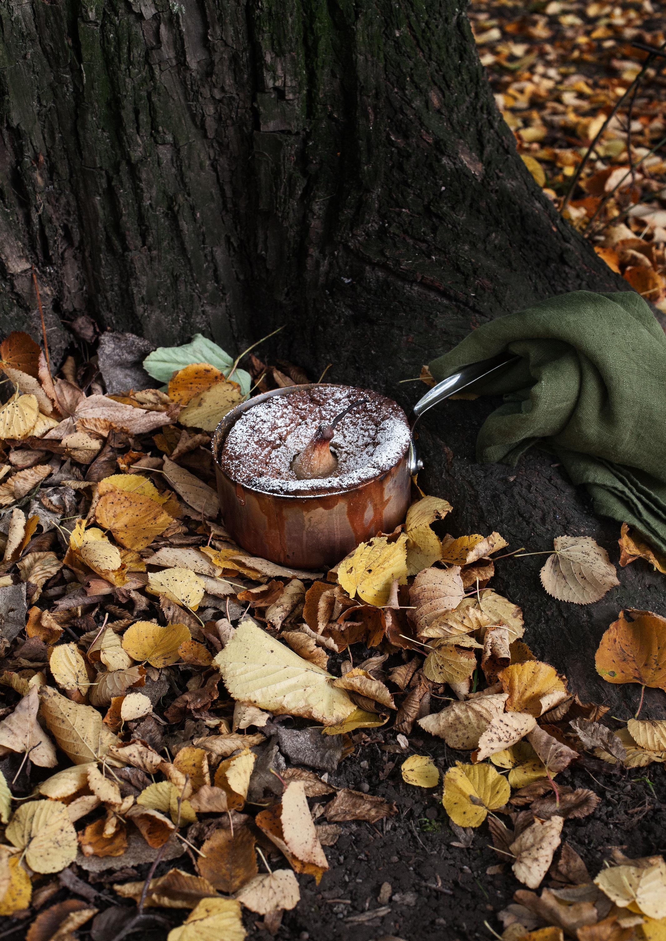Pastinaken-Apfelkuchen-im-Kupfertopf-gebackenIMG_6247